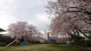 nagoya-amimono-school-2019-4-10-2